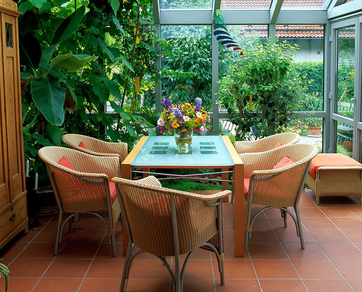 conservatory plants prices